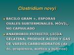 clostridium novyi