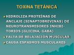toxina tet nica13
