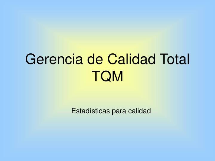 gerencia de calidad total tqm n.