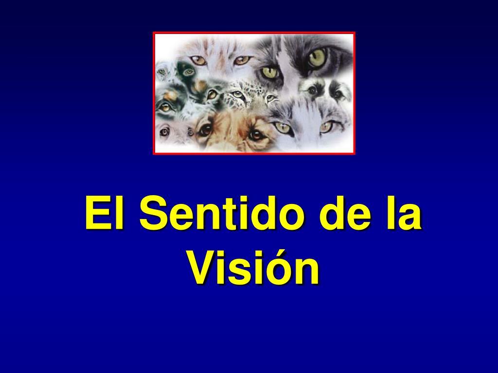 el sentido de la visi n l.