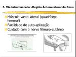3 via intramuscular regi o ntero lateral da coxa