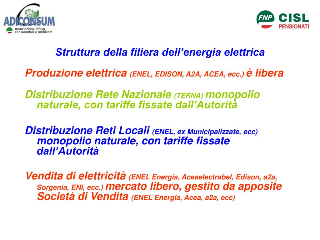 Struttura della filiera dell'energia elettrica
