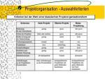 projektorganisation auswahlkriterien