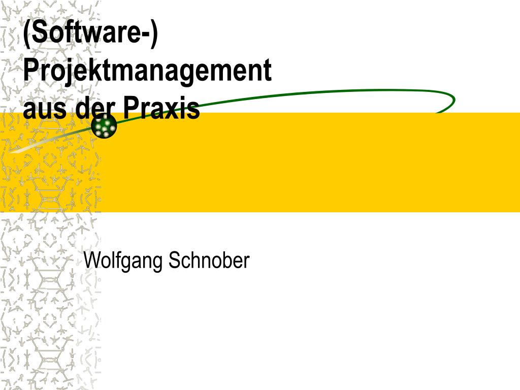 software projektmanagement aus der praxis l.