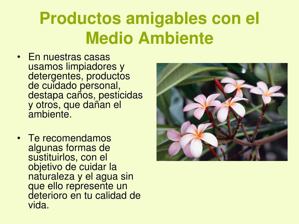 productos amigables con el medio ambiente l.