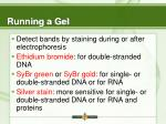running a gel18