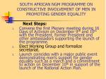south african ngm programme on constructive involvement of men in promoting gender equality16
