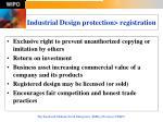 industrial design protection registration