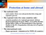 protection at home and abroad