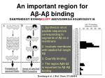 an important region for a a binding daefrhdsgy evhhq klvff aedvgsnkga iiglmvggvv ia