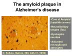 the amyloid plaque in alzheimer s disease
