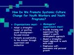 how do we promote systemic culture change for youth workers and youth programs