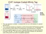icat isotope coded affinity tag28
