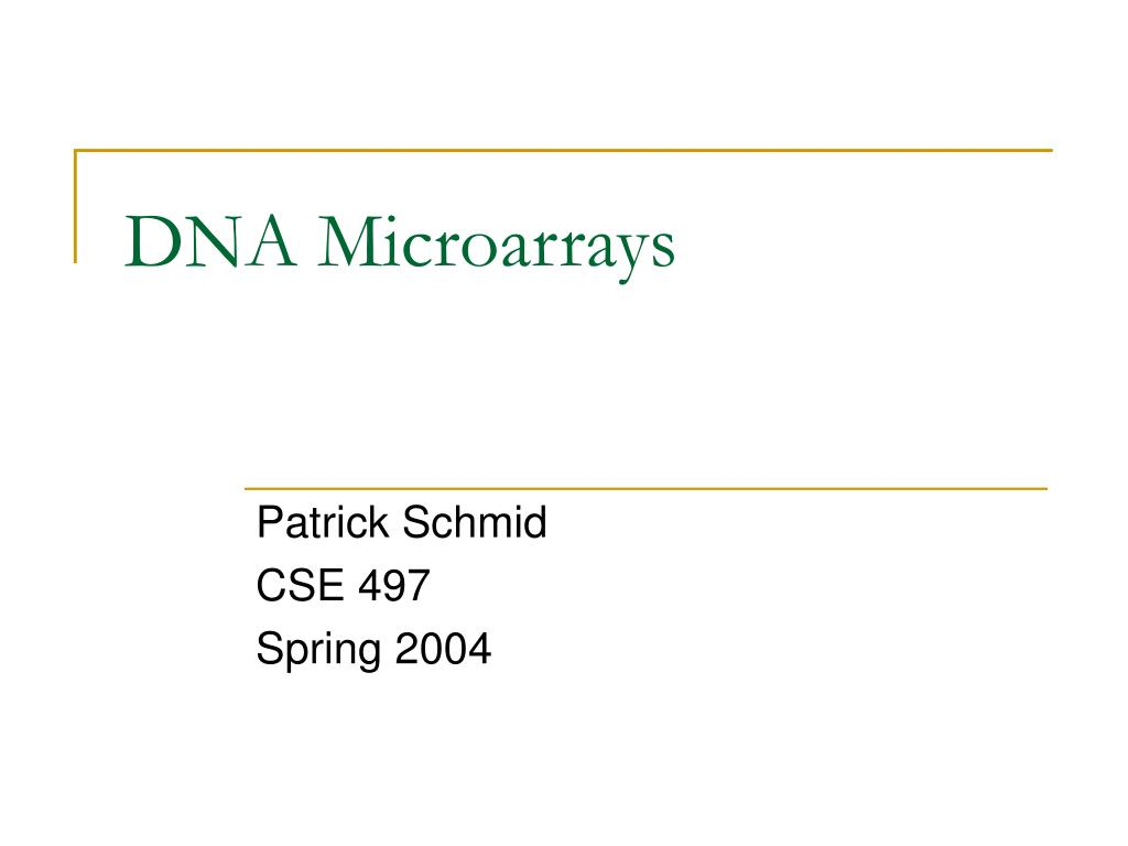 dna microarrays l.