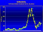 girasol58