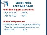 eligible youth and young adults