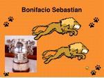bonifacio sebastian