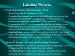 labeling theories