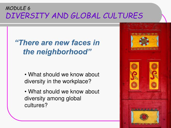 module 6 diversity and global cultures n.