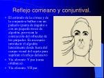 reflejo corneano y conjuntival