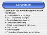 consortium25
