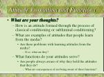 attitude formation and functions