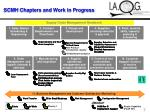 scmh chapters and work in progress