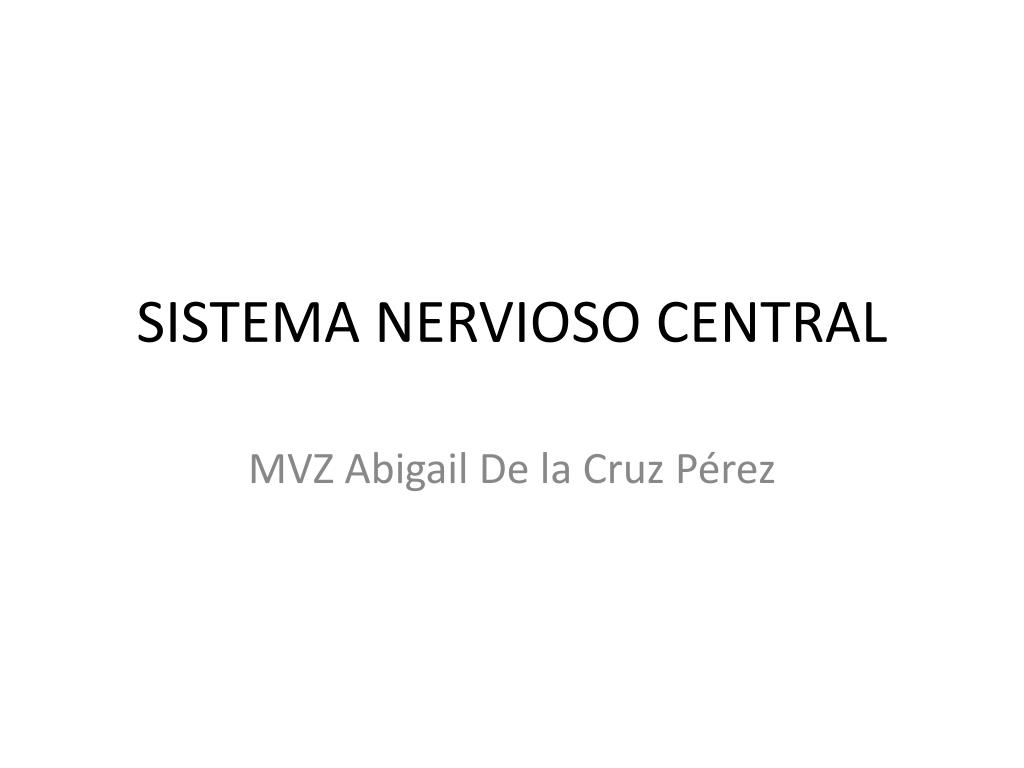 sistema nervioso central l.