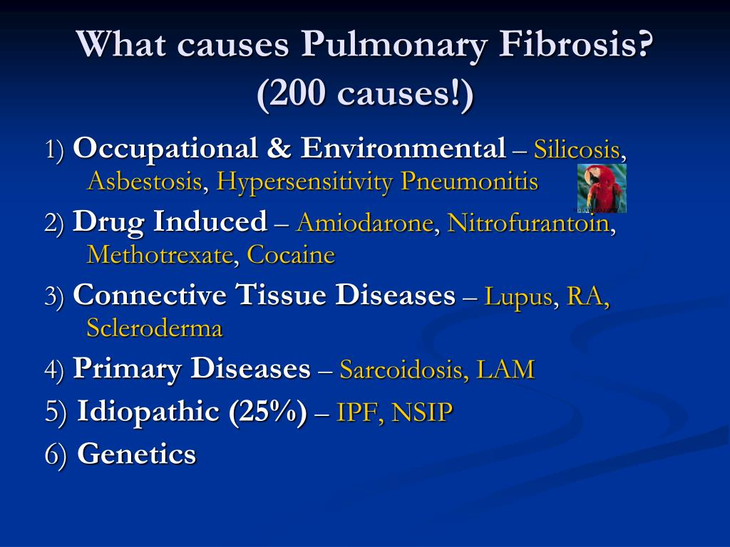 what is the prognosis for pulmonary fibrosis
