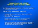 fisiopatolog a del estr s efectos sobre sistema inmune39