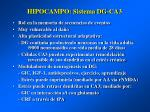 hipocampo sistema dg ca3