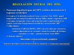regulaci n neural del hha