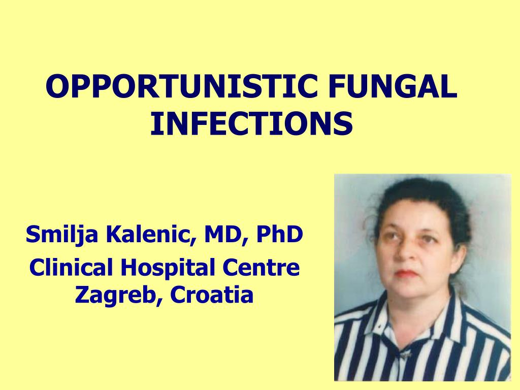 opportunistic fungal infections l.