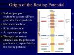 origin of the resting potential