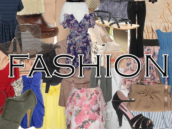 fashion n.