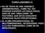 conclusiones iv