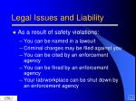 legal issues and liability