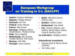european workgroup on training in c l eaclpp
