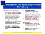 example for tutorial and supervision nuremberg
