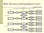 rea revenue and expenditure cycles