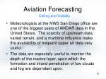 aviation forecasting50