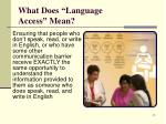 what does language access mean