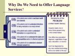 why do we need to offer language services61