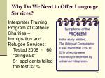 why do we need to offer language services62