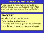 assess the film in detail