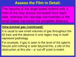 assess the film in detail12