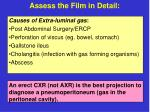 assess the film in detail16