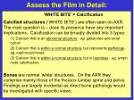 assess the film in detail17