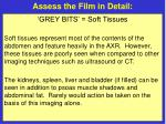 assess the film in detail19