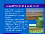groundwater and vegetation